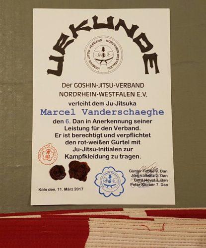 Graduierungsurkunde zum 6. Dan Ju-Jitsu